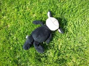 Kuscheltier im Gras